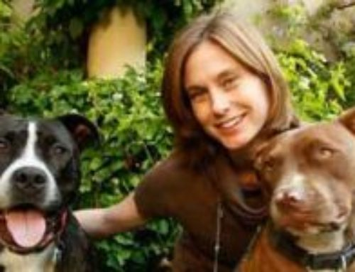National Take Your Dog To Work Day: Aimee Gilbreath of Michelson Found Animals chats with Dr. Alvin