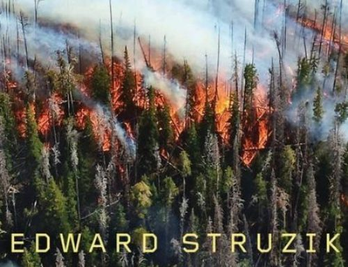 Edward Struzik, Author Of Firestorm: How Wildfire Will Shape Our Future Chats On DrAlvin.com