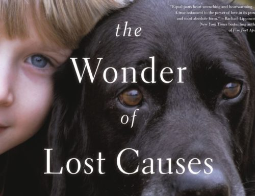 My Conversation With Nick Trout, Author Of The Wonder of Lost Causes: A Novel