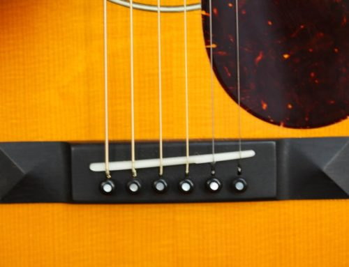 My Conversation With David Schiller, Author Of Guitar: The World's Most Seductive Instrument